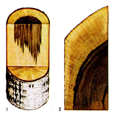 Водоупорность древесины